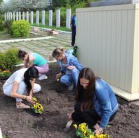 Акция Посади цветы!